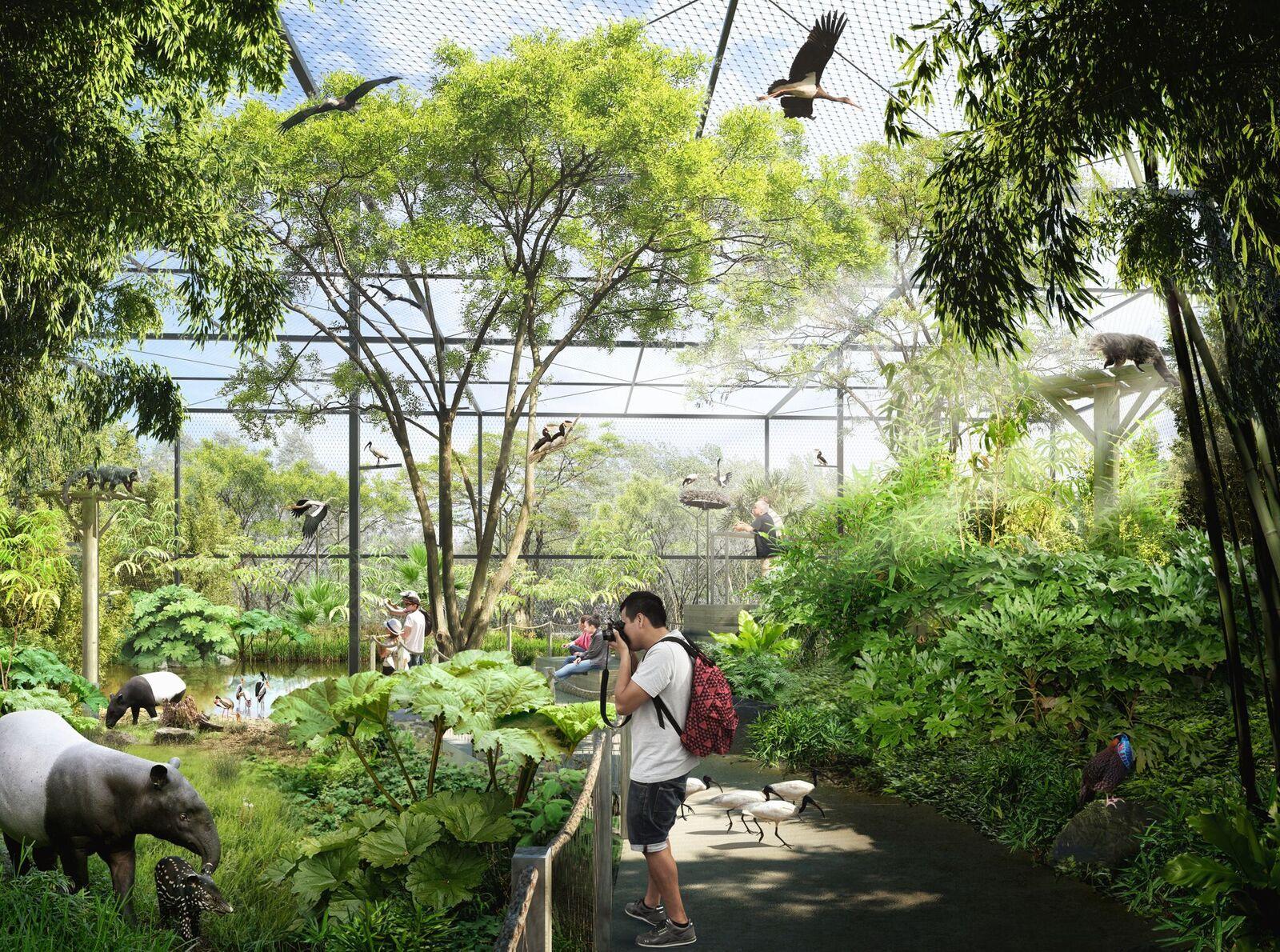 La forêt asiatique du Parc de la Tête d'Or