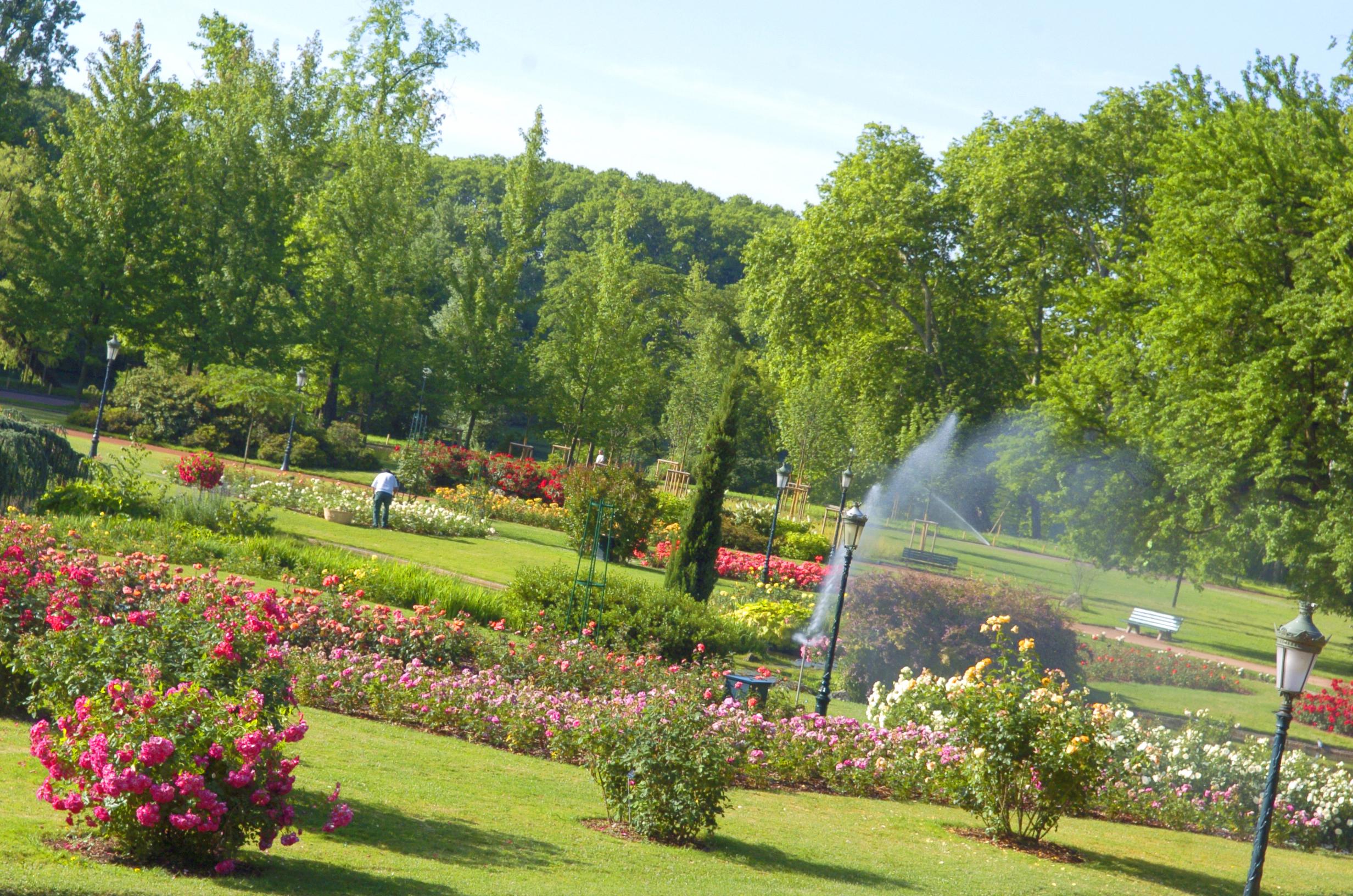 Vue générale / Parc de la Tête d'or / Roseraie