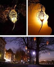Lyon assure la co-direction de la 3ème édition de La Fiesta de la Luz