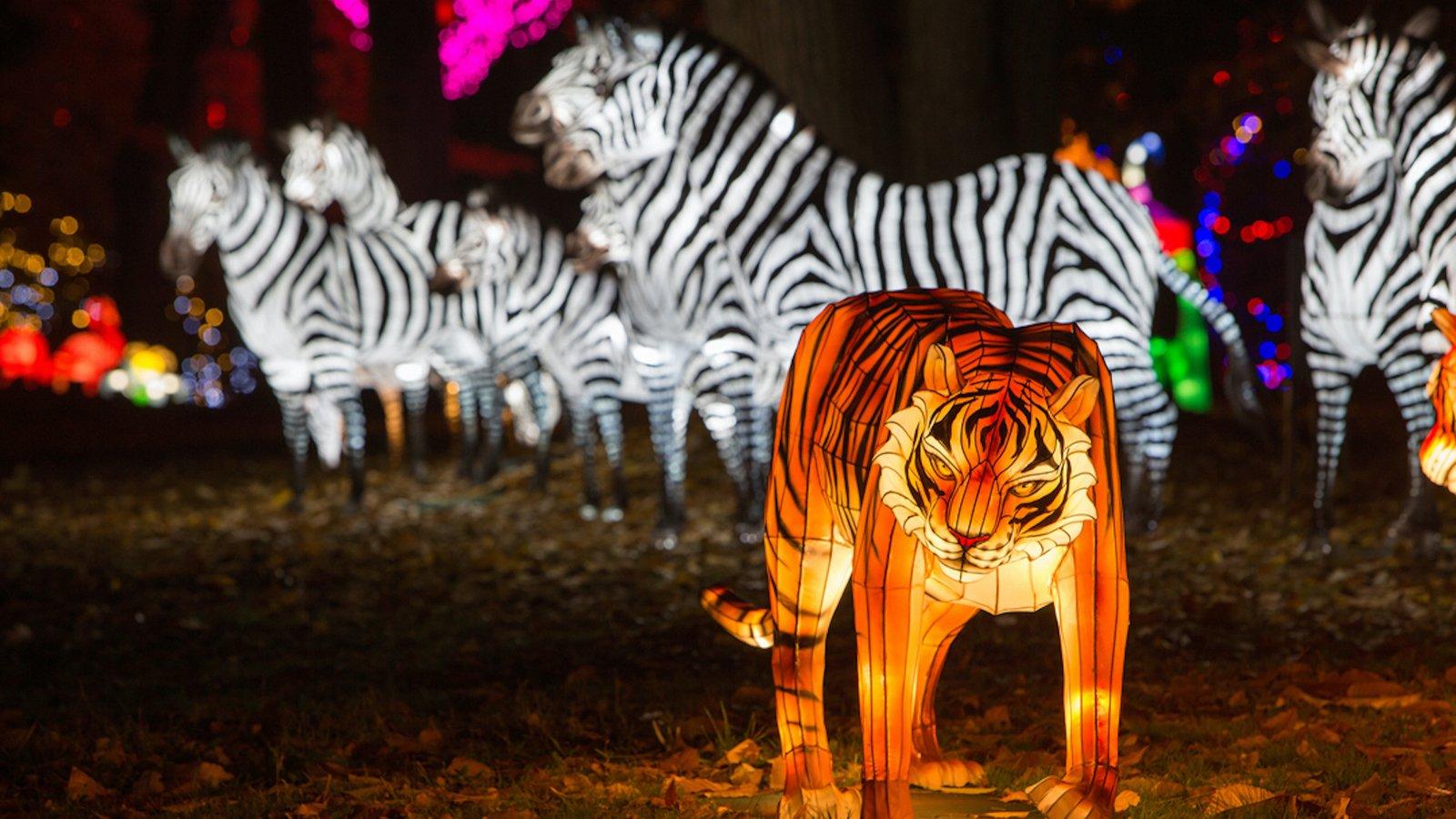 Festival des Lumières Sauvages au Safari de Peaugres, du 3 au 30 janvier 2022.